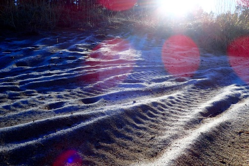 Frost in the sand