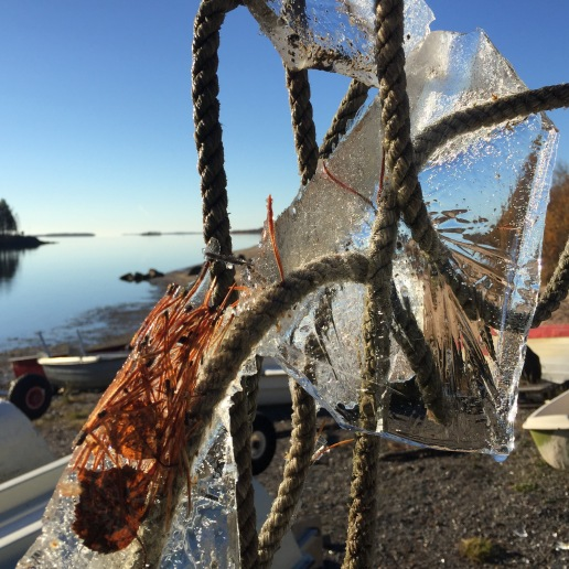 Frosty boat ropes