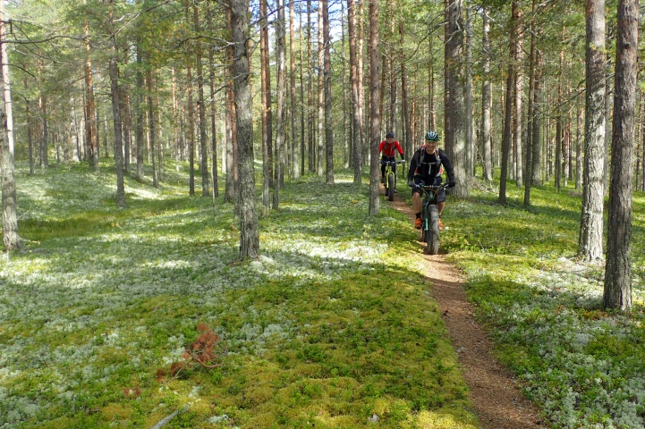 Lovely trails