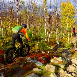 Fat bike killing the rocks