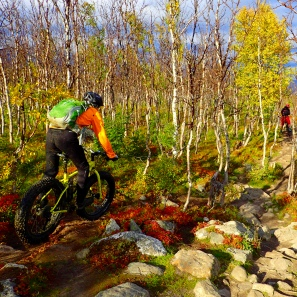 Fat bike killing the rocks